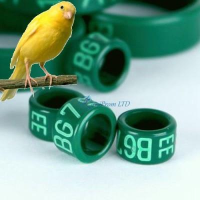 КОЛЬЦА для канареек, попугаев ПЛАСТИК с лазерной гравировкой, цвет ЗЕЛЕНЫЙ