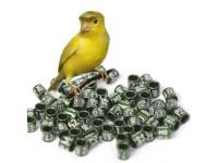 Кольца для канареек и попугаев
